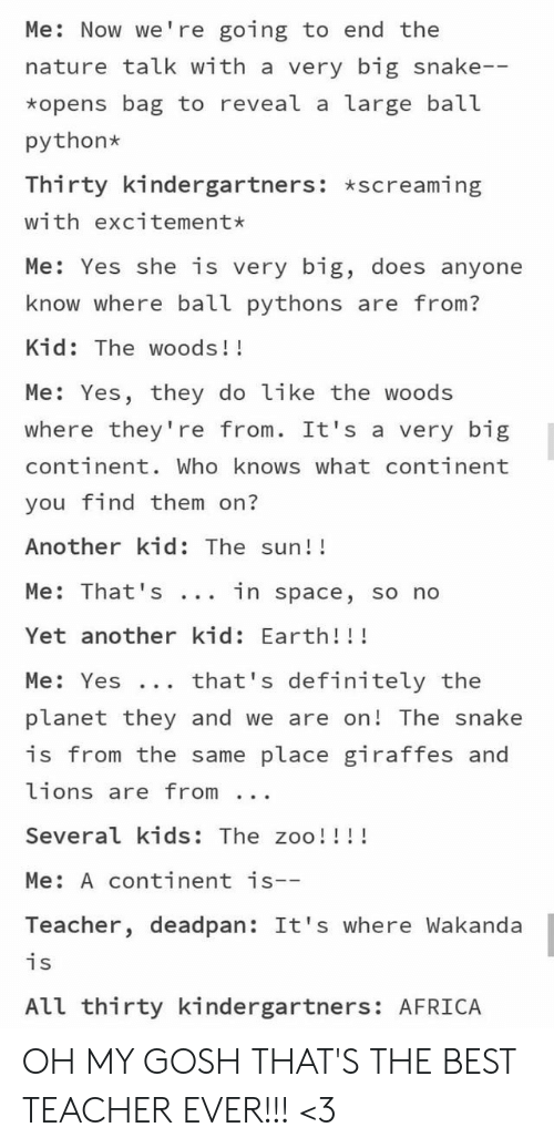 Africa, Definitely, and Teacher: Me: Now we're going to end the  nature talk with a very big snake--  *opens bag to reveal a large ball  python  Thirty kindergartners: *screaming  with excitement*  Me: Yes she is very big, does anyone  know where ball pythons are from?  Kid: The woods!!  Me: Yes, they do like the woods  where they're from. It's a very big  continent. Who knows what continent  you find them on?  Another kid: The sun!!  Me: That 's  in space, so no  Yet another kid: Earth!!!  that's definitely the  Me: Yes ..  planet they and we are on! The snake  is from the same place giraffes and  lions are from  Several kids: The zoo!!!!  Me: A continent is--  Teacher, deadpan: It's where Wakanda  is  All thirty kindergartners: AFRICA OH MY GOSH THAT'S THE BEST TEACHER EVER!!! <3