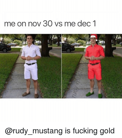Fucking, Memes, and Mustang: me on nov 30 vs me dec1 @rudy_mustang is fucking gold