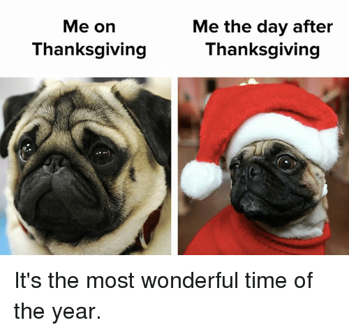 it's the most wonderful time of the year: Me on  Thanksgiving  Me the day after  Thanksgiving It's the most wonderful time of the year.