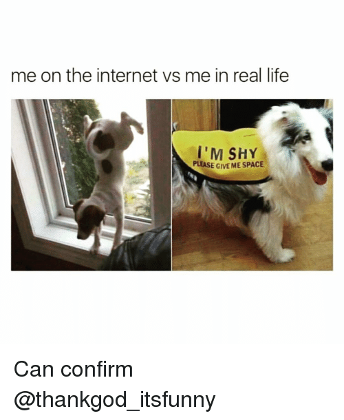 Funny, Internet, and Life: me on the internet vs me in real life  I'M SHY  PLEASE GIVE ME SPACE Can confirm @thankgod_itsfunny