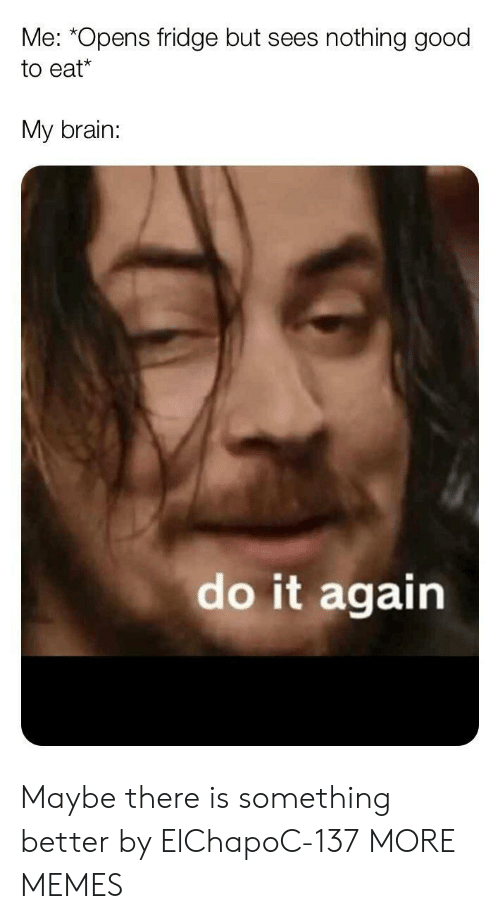 Dank, Do It Again, and Memes: Me: *Opens fridge but sees  nothing good  to eat*  My brain:  do it again Maybe there is something better by ElChapoC-137 MORE MEMES