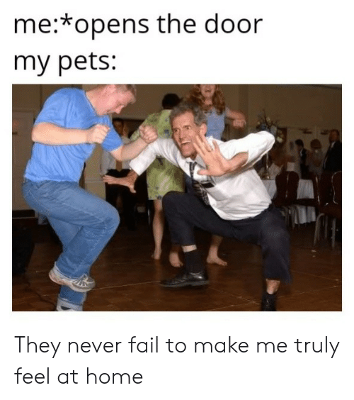 Fail, Pets, and Home: me:*opens the door  my pets: They never fail to make me truly feel at home