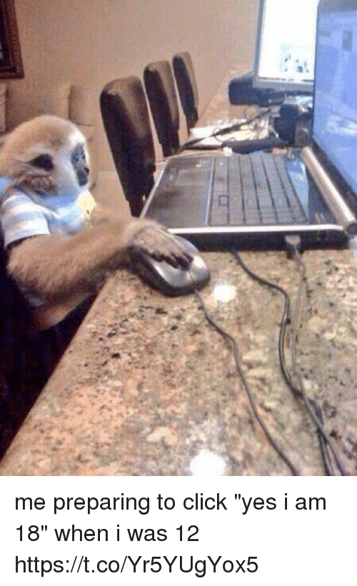 """Click, Girl Memes, and Yes: me preparing to click """"yes i am 18"""" when i was 12 https://t.co/Yr5YUgYox5"""