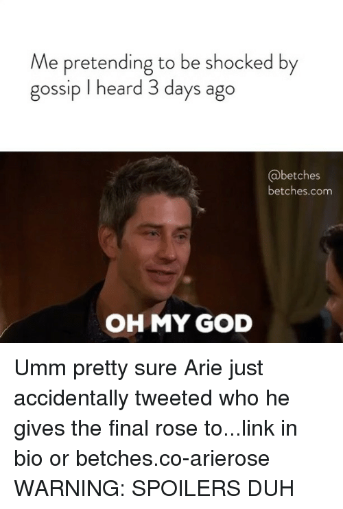 arie: Me pretending to be shocked by  gossip I heard 3 days ago  betches  betches.com  OH MY GOD Umm pretty sure Arie just accidentally tweeted who he gives the final rose to...link in bio or betches.co-arierose WARNING: SPOILERS DUH