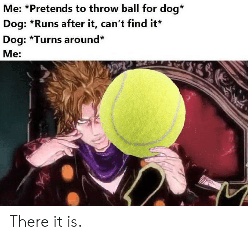 Dog, Ball, and For: Me: *Pretends to throw ball for dog*  Dog: *Runs after it, can't find it  Dog: *Turns around*  Me: There it is.