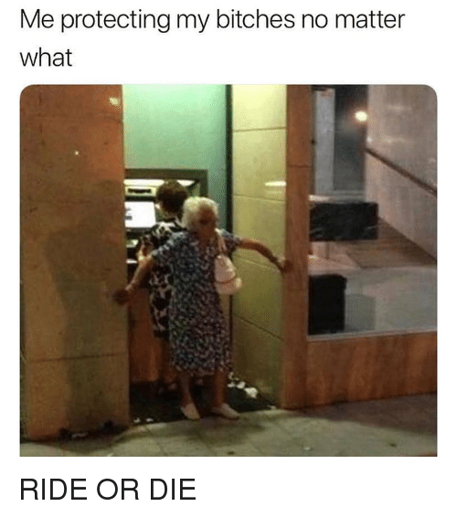 Memes, 🤖, and What: Me protecting my bitches no matter  what RIDE OR DIE