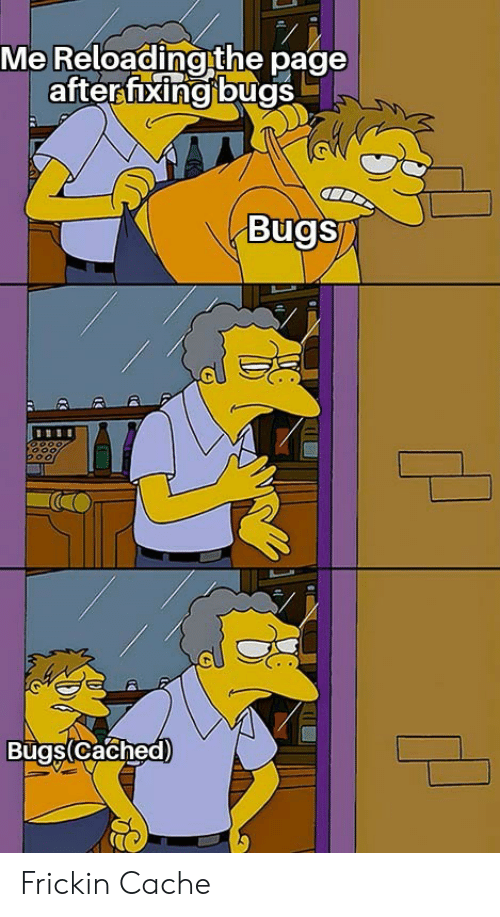 Cache, Page, and Bugs: Me Reloading the page  after fixing bugs  Bugs  Bugs(Cached) Frickin Cache