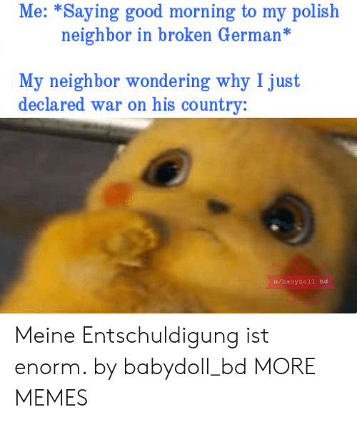 polish: Me: *Saying good morning to my polish  neighbor in broken German*  My neighbor wondering why I just  declared war on his country:  u/babydoll bd Meine Entschuldigung ist enorm. by babydoll_bd MORE MEMES