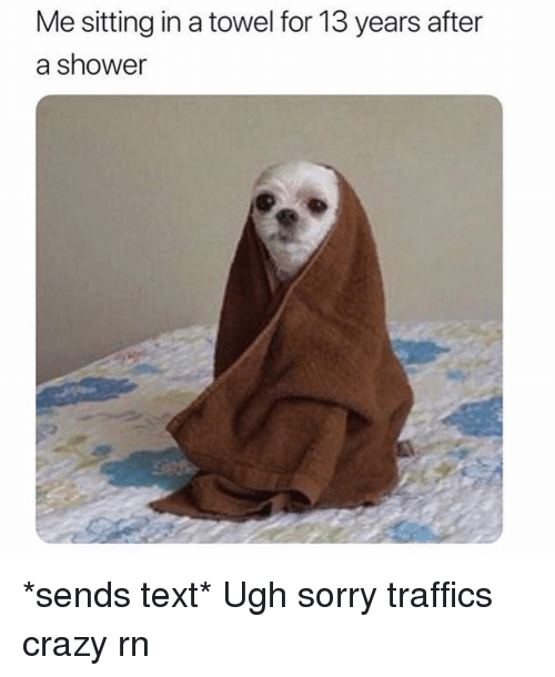 Crazy, Shower, and Sorry: Me sitting in a towel for 13 years after  a shower *sends text* Ugh sorry traffics crazy rn