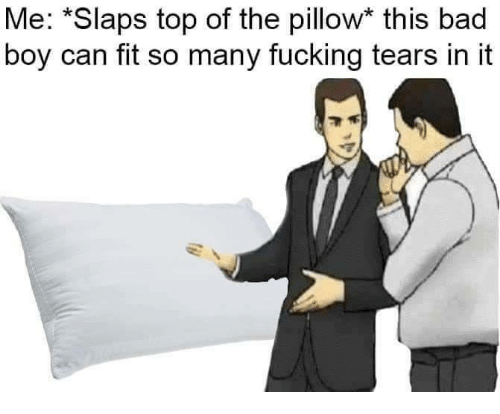 Bad, Fucking, and Boy: Me: *Slaps top of the pillow* this bad  boy can fit so many fucking tears in it