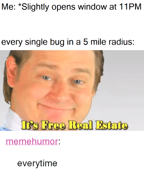 "Tumblr, Blog, and Http: Me: *Slightly opens window at 11PM  every single bug in a 5 mile radius:  I's Freo Real Estate <p><a href=""http://memehumor.net/post/172720939398/everytime"" class=""tumblr_blog"">memehumor</a>:</p>  <blockquote><p>everytime</p></blockquote>"