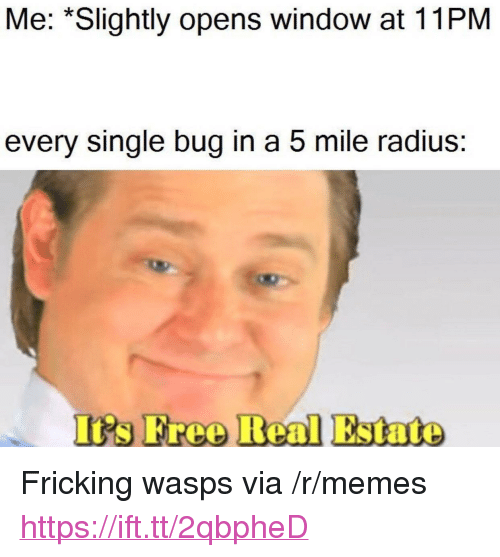"Memes, Free, and Real Estate: Me: *Slightly opens window at 11PM  every single bug in a 5 mile radius:  Is Free Real Estate <p>Fricking wasps via /r/memes <a href=""https://ift.tt/2qbpheD"">https://ift.tt/2qbpheD</a></p>"