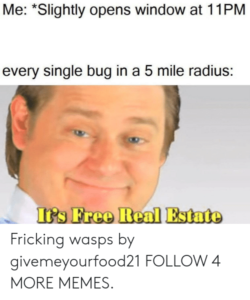Fricking: Me: *Slightly opens window at 11PM  every single bug in a 5 mile radius:  It's Free Real Estate Fricking wasps by givemeyourfood21 FOLLOW 4 MORE MEMES.