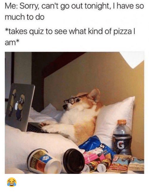 Dank, Pizza, and Sorry: Me: Sorry, can't go out tonight, I have so  much to do  *takes quiz to see what kind of pizza l  am* 😂