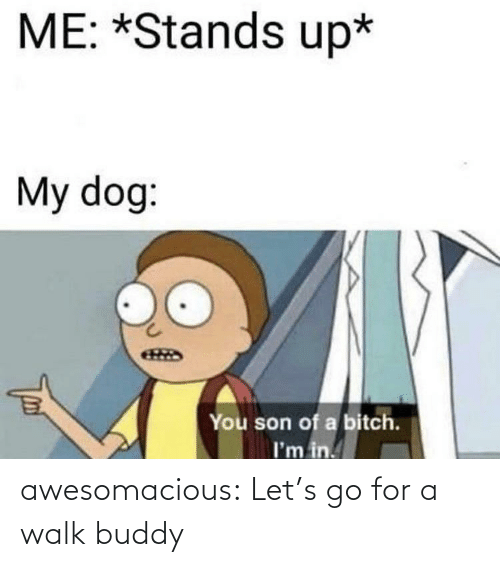 Stands: ME: *Stands up*  My dog:  You son of a bitch.  I'm in. awesomacious:  Let's go for a walk buddy