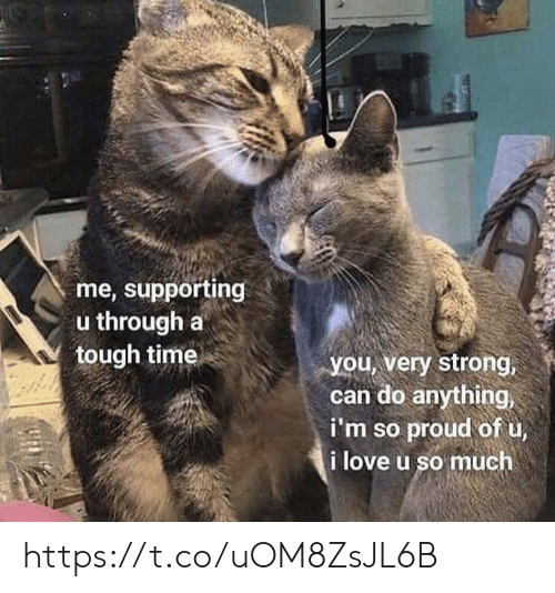 Love, Memes, and Time: me, supporting  u through a  tough time  you, very strong,  can do anything,  i'm so proud of u,  i love u so much https://t.co/uOM8ZsJL6B