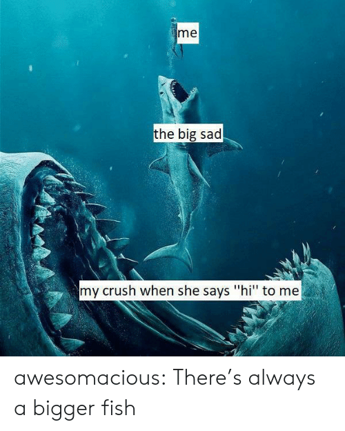 "Bigger: me  the big sad  my crush when she says ""hi"" to me awesomacious:  There's always a bigger fish"