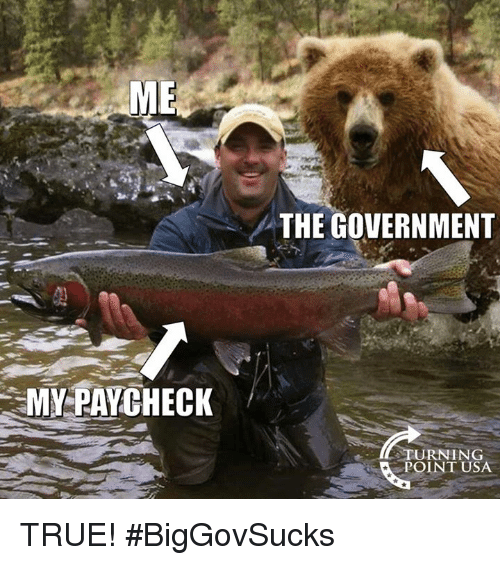 Memes, True, and Government: ME  THE GOVERNMENT  MY PAYCHECK  STURNING  POINT USA TRUE! #BigGovSucks