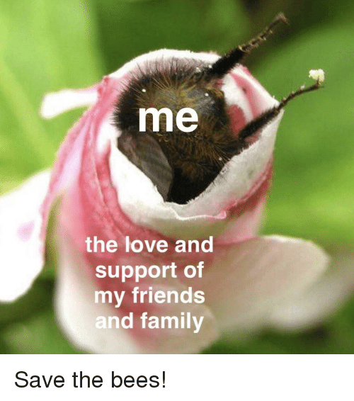 Me The Love And Support Of My Friends And Famil Friends Meme On