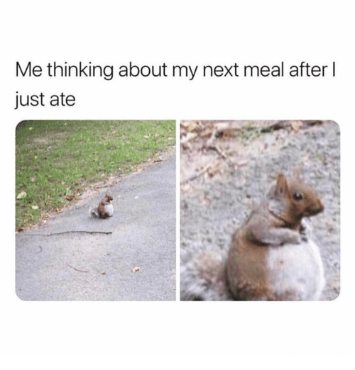 Girl Memes, Next, and Thinking: Me thinking about my next meal after l  just ate
