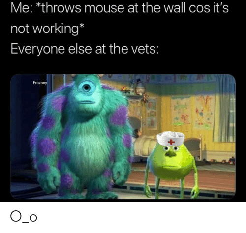 cos: Me: *throws mouse at the wall cos it's  not working*  Everyone else at the vets:  Frozony O_o