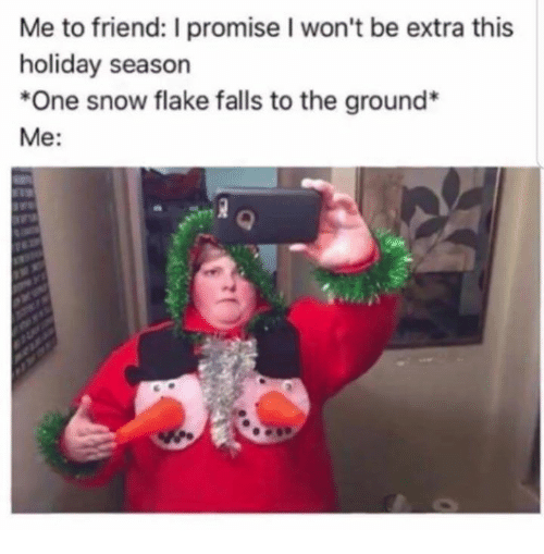 Snow, Humans of Tumblr, and One: Me to friend: I promise I won't be extra this  holiday season  *One snow flake falls to the ground*  Me: