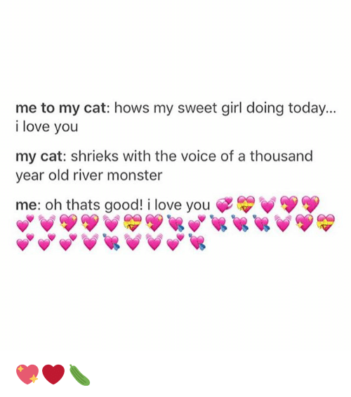 Love, Memes, and Monster: me to my cat: hows my sweet girl doing today...  i love you  my cat: shrieks with the voice of a thousand  year old river monster  me: oh thats good! i love you 💖❤️🥒