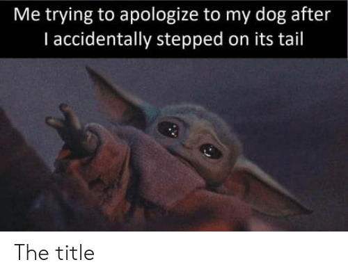 i accidentally: Me trying to apologize to my dog after  I accidentally stepped on its tail The title