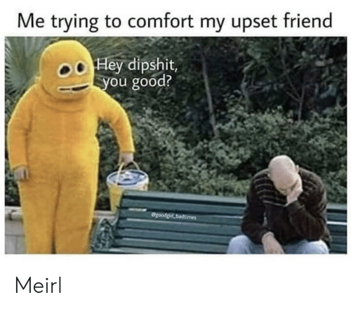 Good, MeIRL, and Friend: Me trying to comfort my upset friend  Hey dipshit,  you good?  GgoodgirLbadtimes Meirl