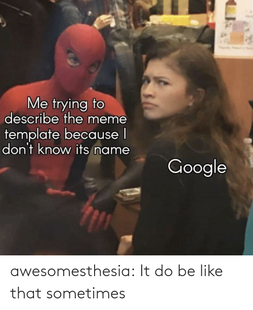 Know Its: Me trying to  describe the meme  template because I  don't know its name  Google awesomesthesia:  It do be like that sometimes