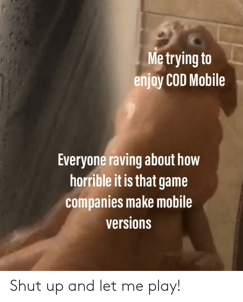 raving: Me trying to  enjoy COD Mobile  Everyone raving about how  horrible it is that game  companies make mobile  versions Shut up and let me play!
