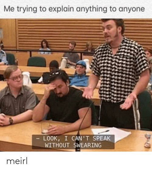 MeIRL, Speak, and Look: Me trying to explain anything to anyone  LOOK, I CAN'T SPEAK  WITHOUT SWEARING meirl