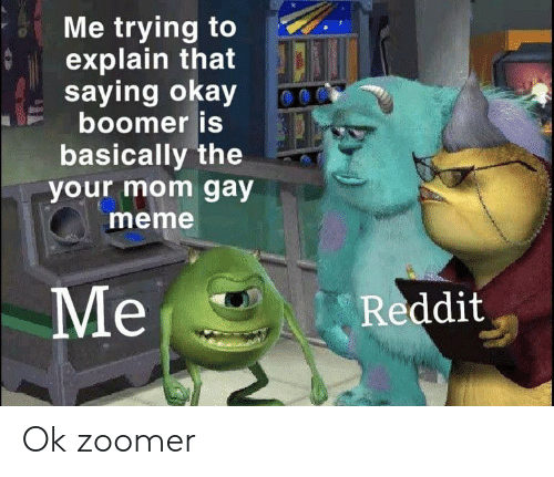 Gay Meme: Me trying to  explain that  saying okay  boomer is  basically the  your mom gay  meme  Mе  Reddit Ok zoomer