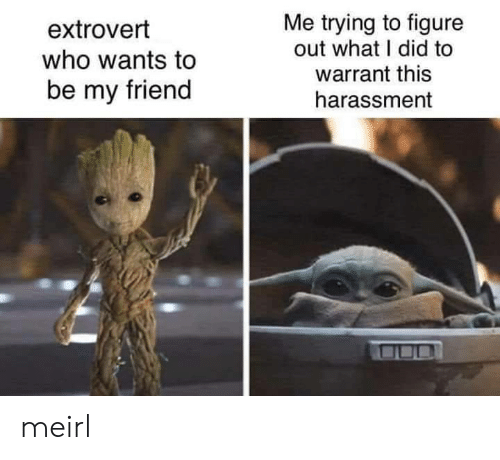 warrant: Me trying to figure  out what I did to  warrant this  extrovert  who wants to  be my friend  harassment meirl