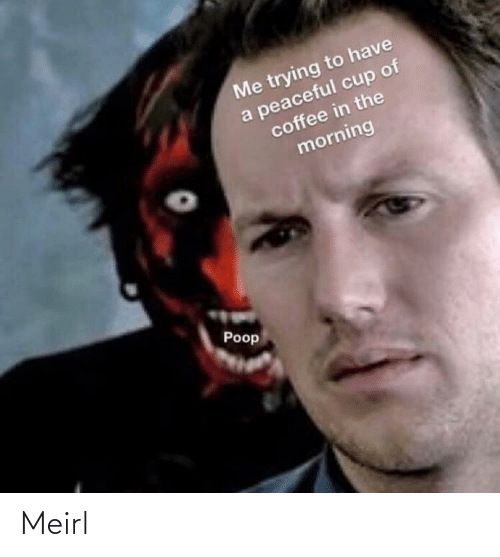 Me Trying To: Me trying to have  a peaceful cup of  coffee in the  morning  Poop Meirl