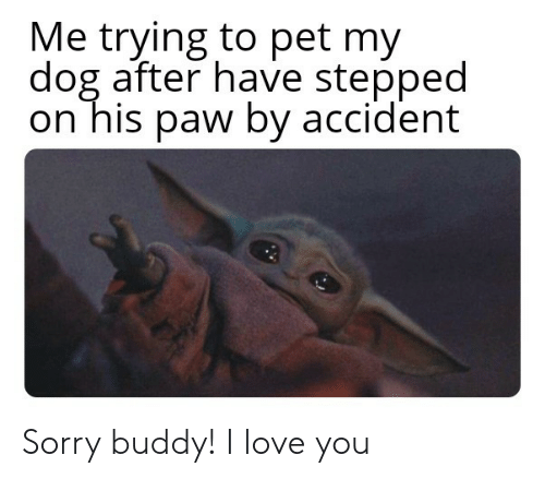 Accident: Me trying to pet my  dog after have stepped  on his paw by accident Sorry buddy! I love you