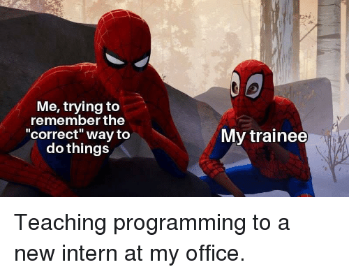 "Office, Programming, and Teaching: Me, trying to  remember the  correct"" way to  do things  My trainee Teaching programming to a new intern at my office."