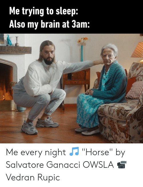 "Dank, Brain, and Horse: Me trying to sleep:  Also my brain at 3am: Me every night 🎵 ""Horse"" by Salvatore Ganacci OWSLA 📹 Vedran Rupic"