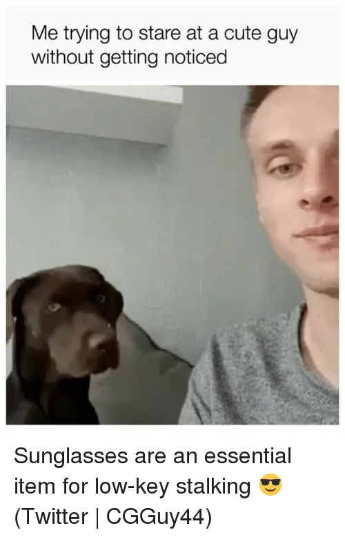Cute, Low Key, and Stalking: Me trying to stare at a cute guy  without getting noticed Sunglasses are an essential item for low-key stalking 😎 (Twitter | CGGuy44)