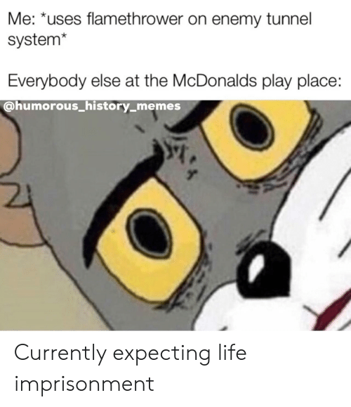 Life, McDonalds, and Memes: Me: *uses flamethrower on enemy tunnel  system*  Everybody else at the McDonalds play place:  @humorous_history_memes Currently expecting life imprisonment
