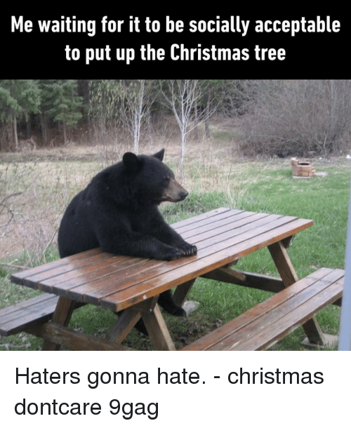 9gag, Christmas, and Memes: Me waiting for it to be socially acceptable  to put up the Christmas tree Haters gonna hate.⠀ -⠀ christmas dontcare 9gag