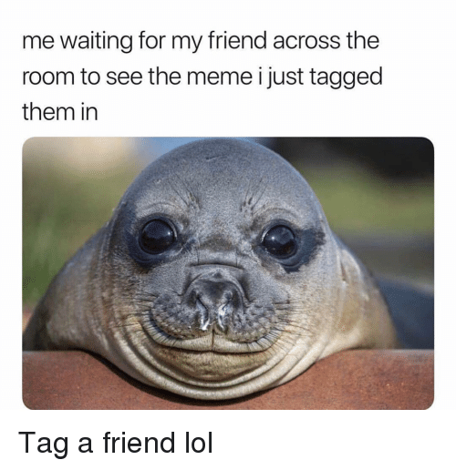 Funny, Lol, and Meme: me waiting for my friend across the  room to see the meme i just tagged  them in Tag a friend lol