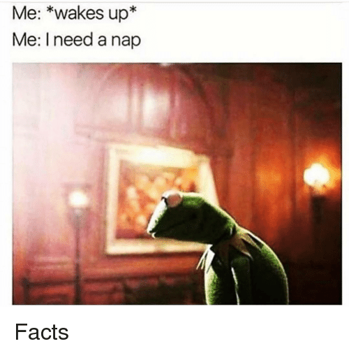 Facts, Funny, and Nap: Me: *wakes up*  Me: I need a nap Facts