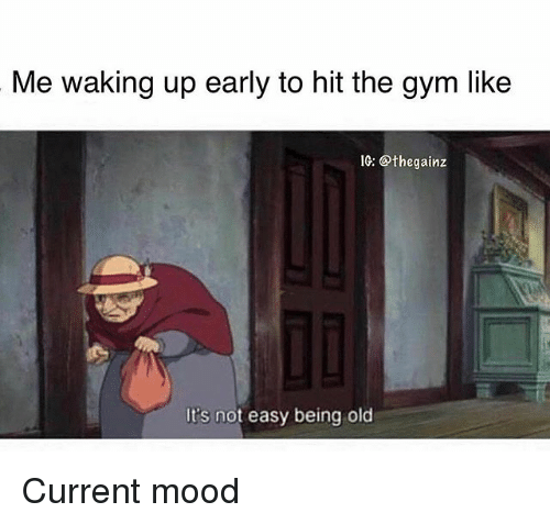 Gym, Memes, and Mood: Me waking up early to hit the gym like  10: @thegainz  It's not easy being old Current mood