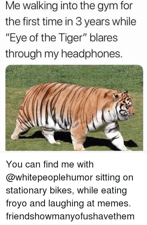 "Gym, Memes, and Eye of the Tiger: Me walking into the gym for  the first time in 3 years while  ""Eye of the Tiger"" blares  through my headphones You can find me with @whitepeoplehumor sitting on stationary bikes, while eating froyo and laughing at memes. friendshowmanyofushavethem"