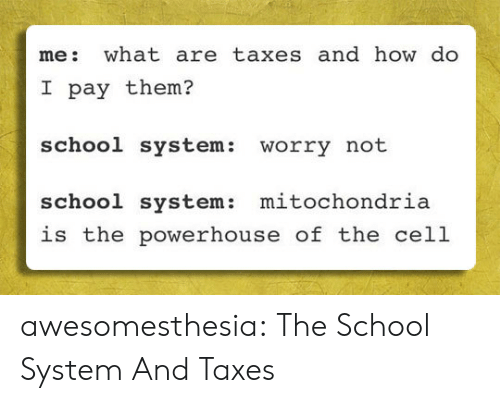 School, Tumblr, and Taxes: me: what are taxes and how do  I pay them?  school system:  worry not  mitochondria  school system:  is the powerhouse of the cell awesomesthesia:  The School System And Taxes