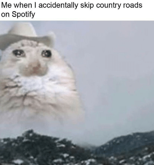 Country Roads: Me when I accidentally skip country roads  on Spotify