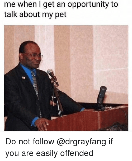 Memes, Opportunity, and 🤖: me when I get an opportunity to  talk about my pet Do not follow @drgrayfang if you are easily offended