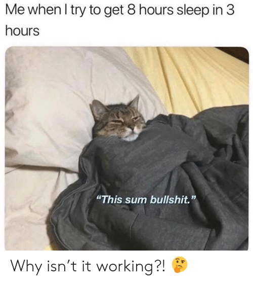"""Bullshit, Sleep, and Working: Me when I try to get 8 hours sleep in 3  hours  """"This sum bullshit."""" Why isn't it working?! 🤔"""