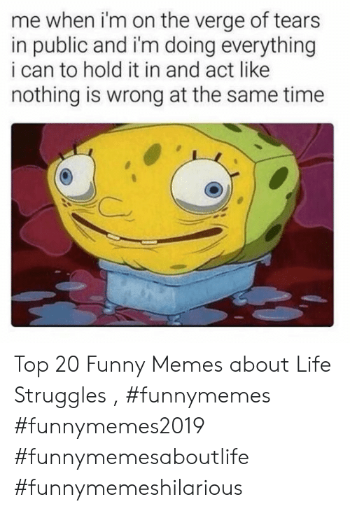 Funny, Life, and Memes: me when i'm on the verge of tears  in public and i'm doing everything  i can to hold it in and act like  nothing is wrong at the same time Top 20 Funny Memes about Life Struggles , #funnymemes #funnymemes2019 #funnymemesaboutlife #funnymemeshilarious